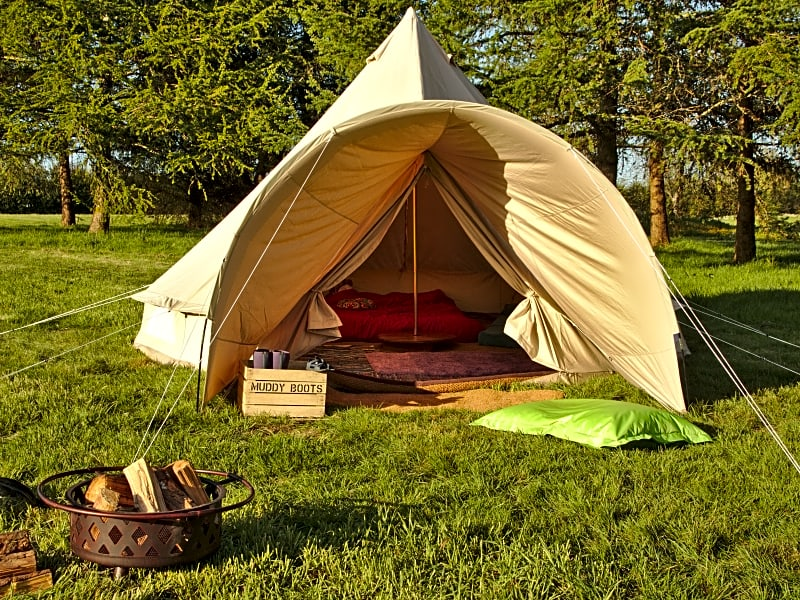 Firecrest Valley Camping and Glamping
