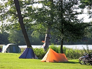 Lakeside pitches among the trees