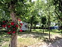 Campsites and holiday parks in Forli-Cesena