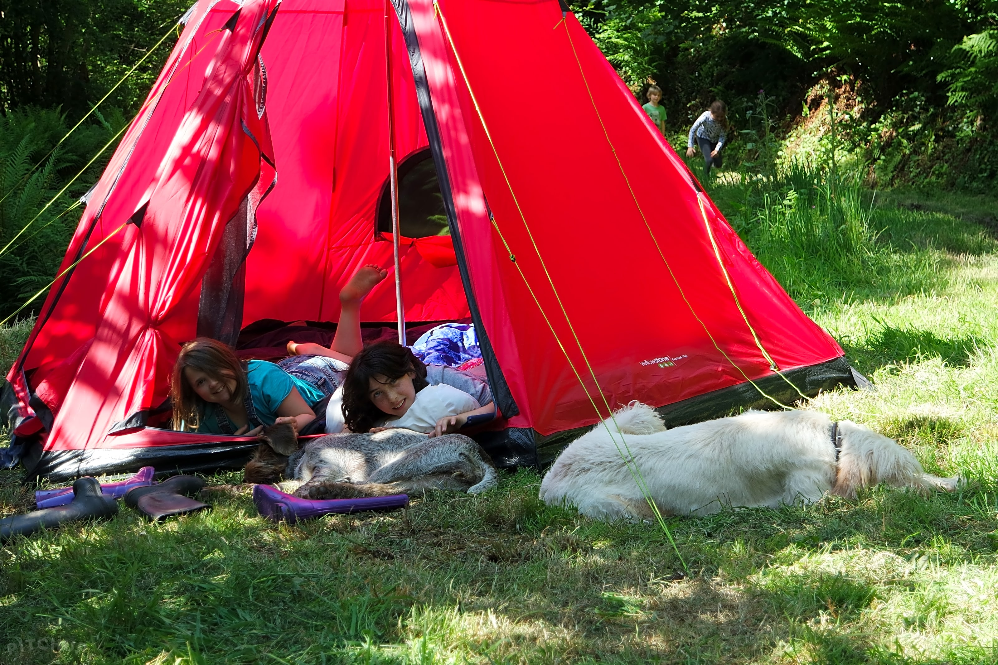 Yomer Wood Camping, Ilfracombe Oppdaterte priser for 2020