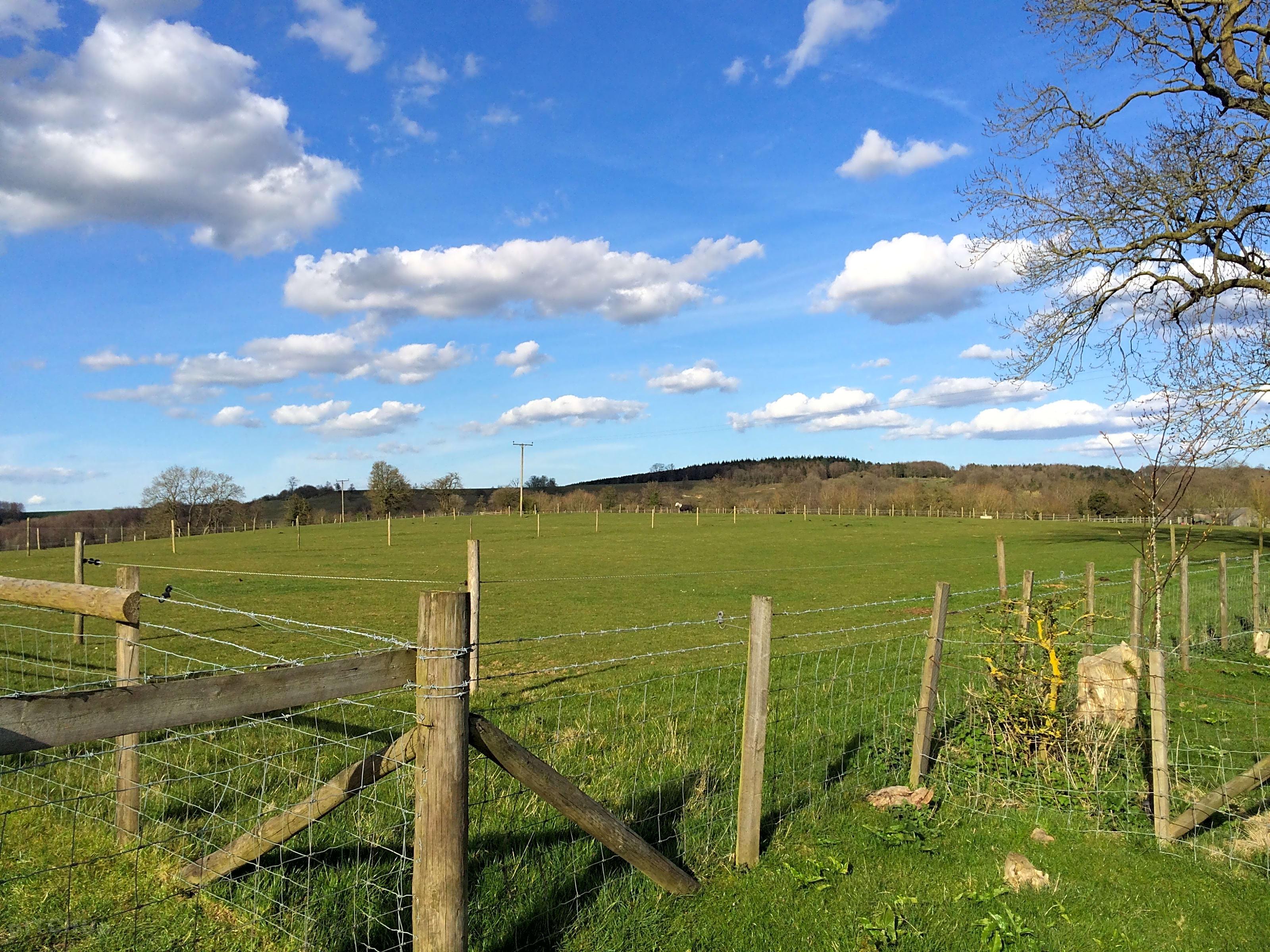 Dunn Street Farm, Ashford - Pitchup®