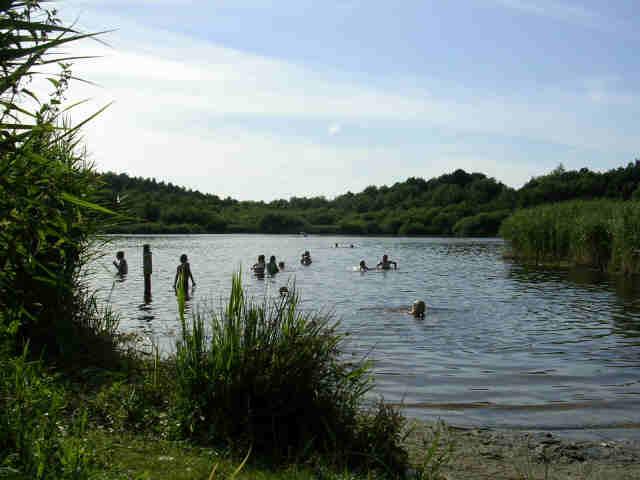 Swimming at Hatchmere