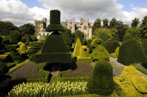 Topiary at Levens Hall. Pic ©Levens Hall.