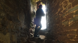 Pitchup.com surveys its kingdom at Raglan Castle