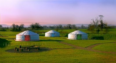Luxury yurts at Caalm Camp