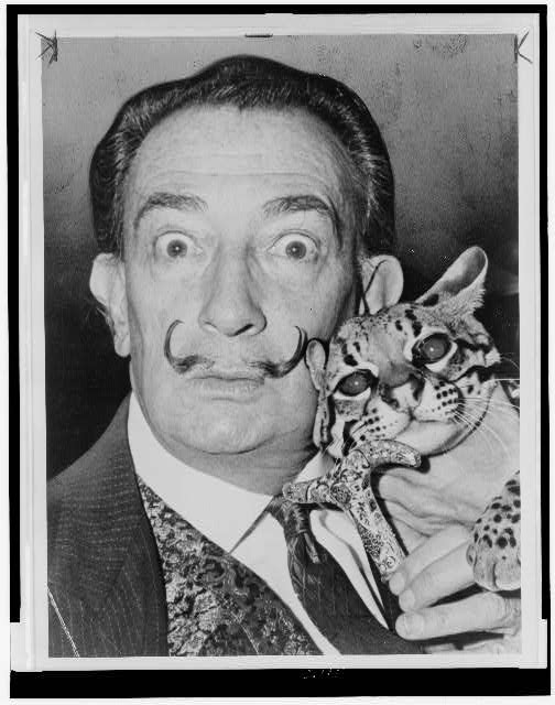 Dali. Occasional animal fan.