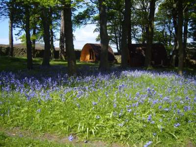 Pods at Grinton Lodge Youth Hostel, N Yorks