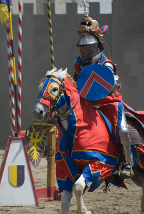Jousting. You know you want to.