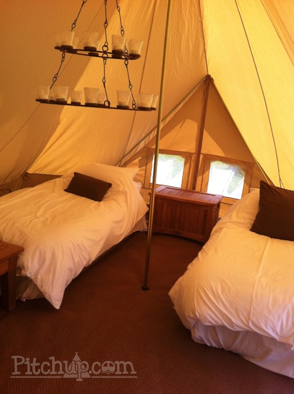 Inside the bell tent at Wattle Hill Oast