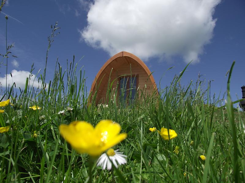 West Wales Camping Pods
