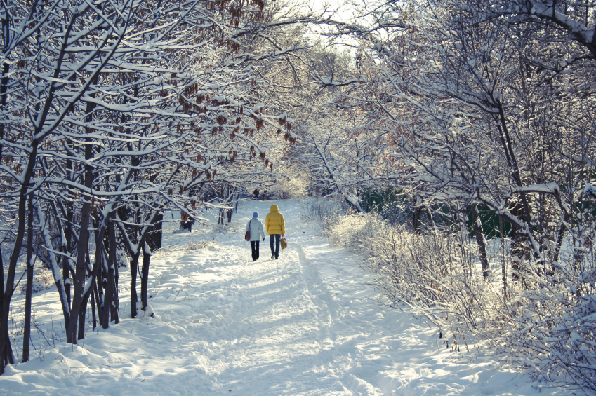 Image result for walking in winter